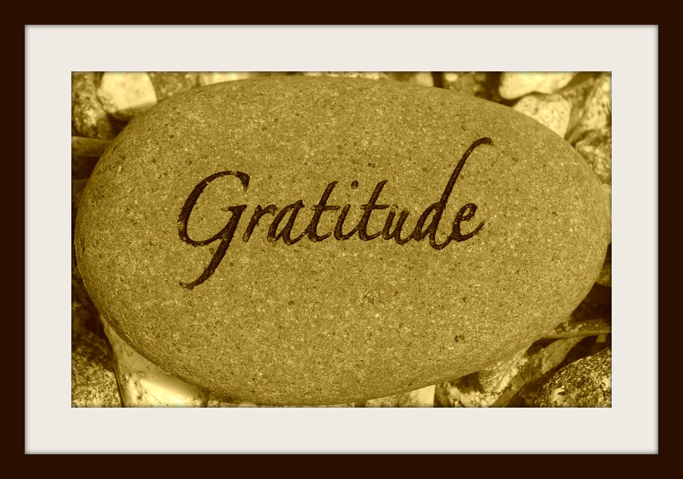 Gratitude Linkup Week Of 10 19 14 31 Days Of Photography