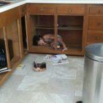 cabinet work, kitchen remodel, kitchen update